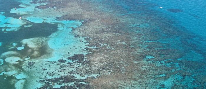 About Florida Keys National Marine Sanctuary