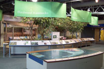 main hall in the Florida Keys Eco-Discovery Center