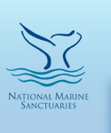 Sanctuaries logo.