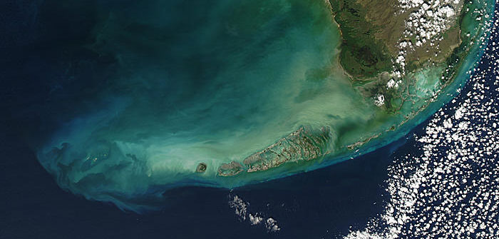 What are the Florida Keys made of