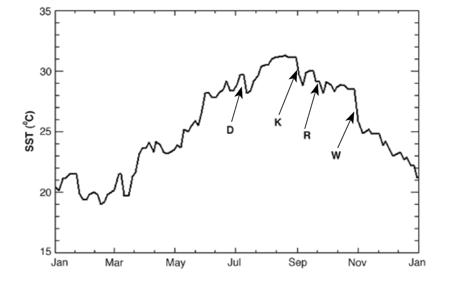 2005 sea surface temperature records at Sombrero Reef show the rapid drop in temperature following the passage of hurricanes Dennis (D), Katrina (K), Rita (R), and Wilma (W).
