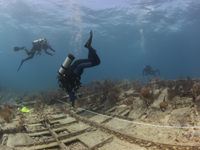 NOAA science divers from the national marine sanctuary system and National Association of Black Scuba Divers are trying to confirm the identity of a shipwreck six miles off Key Largo at Elbow Reef.