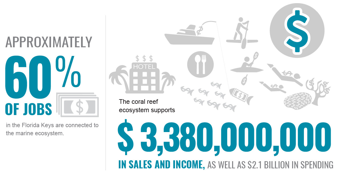 Approximately 60% of jobs in the florida keys are connected to the marine ecosystem. The coral reef ecosystem supports $3,380,000,000 in sales and income, as well as $2.1 billion in spending