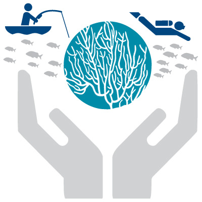 graphic of hands holding up coral with fish and a diver swimming and a person in a boat fishing