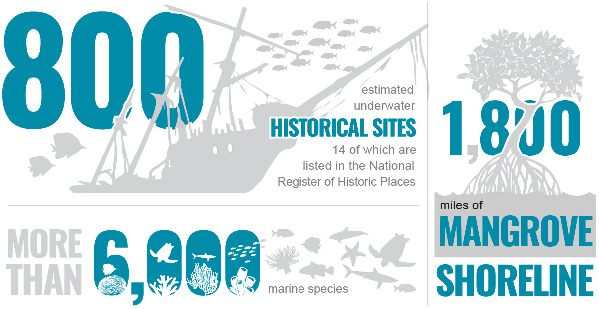 800 estimated underwater historical sites. 14 of which are listed in the national register of historic places. more than 6000 marine species. 1800 miles of mangrove shoreline