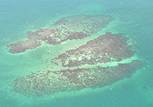 aerial view of Spar buoys in the water