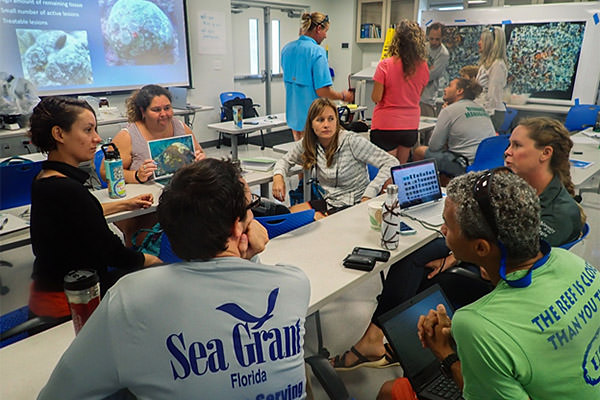 group of people having a discussion around a table. Credit: Karen Neely/Nova Southeastern University