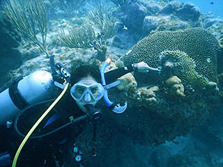 diver pointing out diseased coral