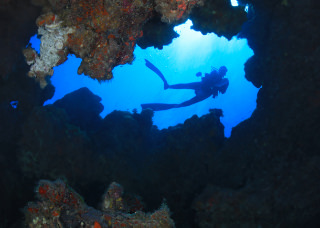 diver swimming around a coral reef
