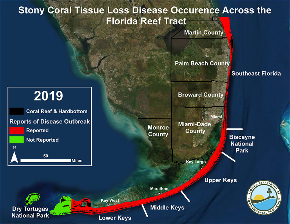 map showing the location of stony coral tissue loss disease in the Florida Keys