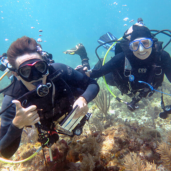 two divers pose for a photo while surveying a reef one smiles while the other gives a thumbs up