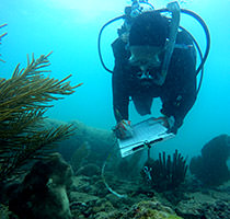 Science divers note the species, size, location and recommendation for the restoration of corals
